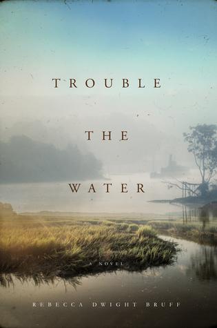 Trouble the Water by Rebecca DwightBruff.
