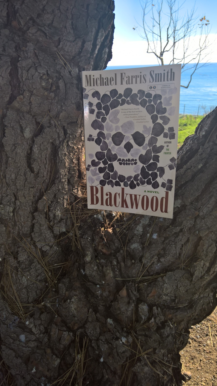 Blackwood by Michael Farris Smith #BookReview.
