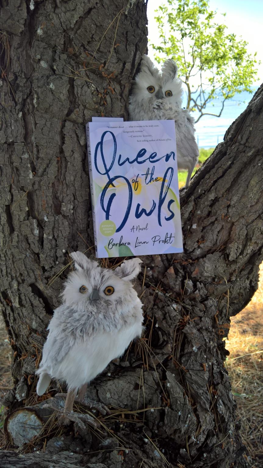 Queen of the Owls