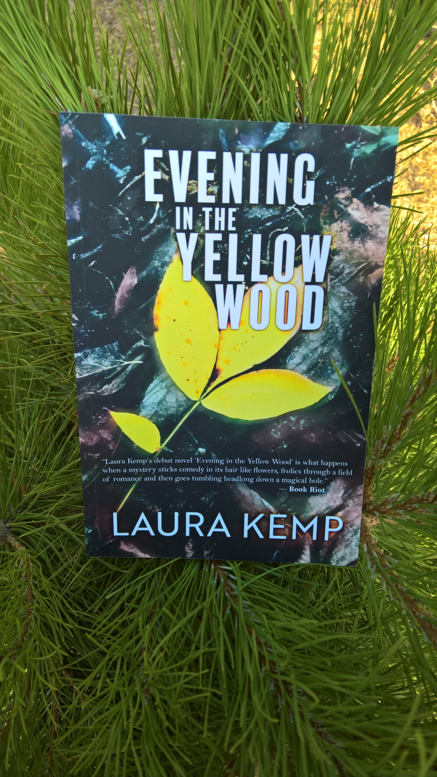 Book Review: Evening in the Yellow Wood     by LauraKemp.